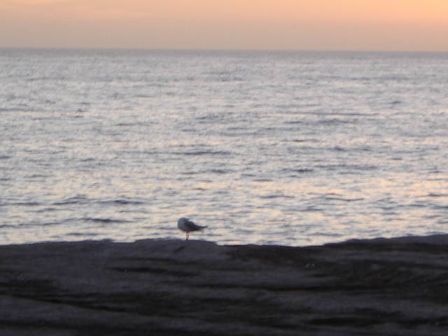 Sunrise at Clovelly