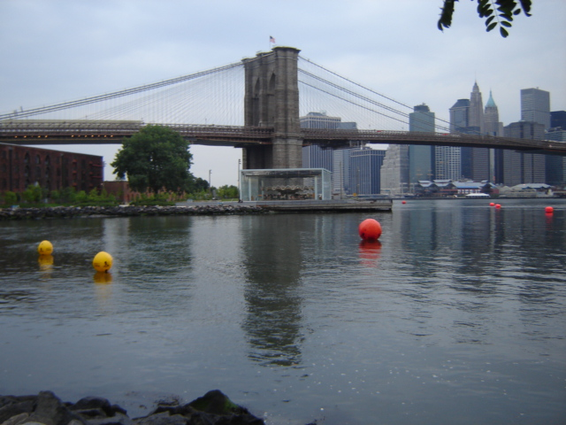 Brooklyn Bridge swim in New York July 2012