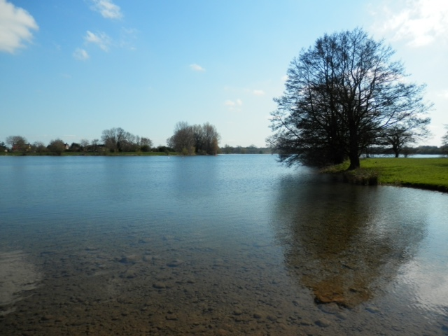 Ellerton water in North Yorkshire was a joy to swim in