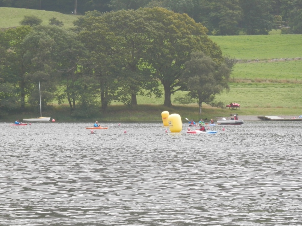 Swimmers near the end of the half-mile race