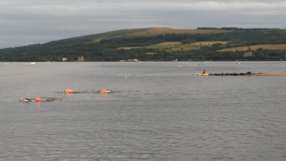 Swimmers lined out on their way to the island