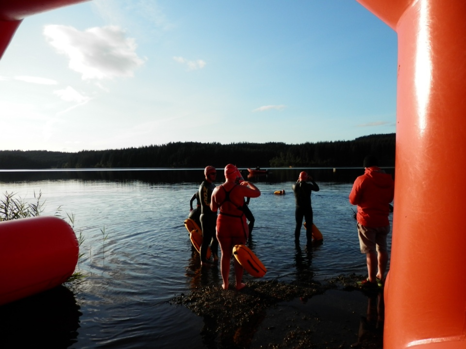 Eager swimmers entering the cool water for the start of the 10km race