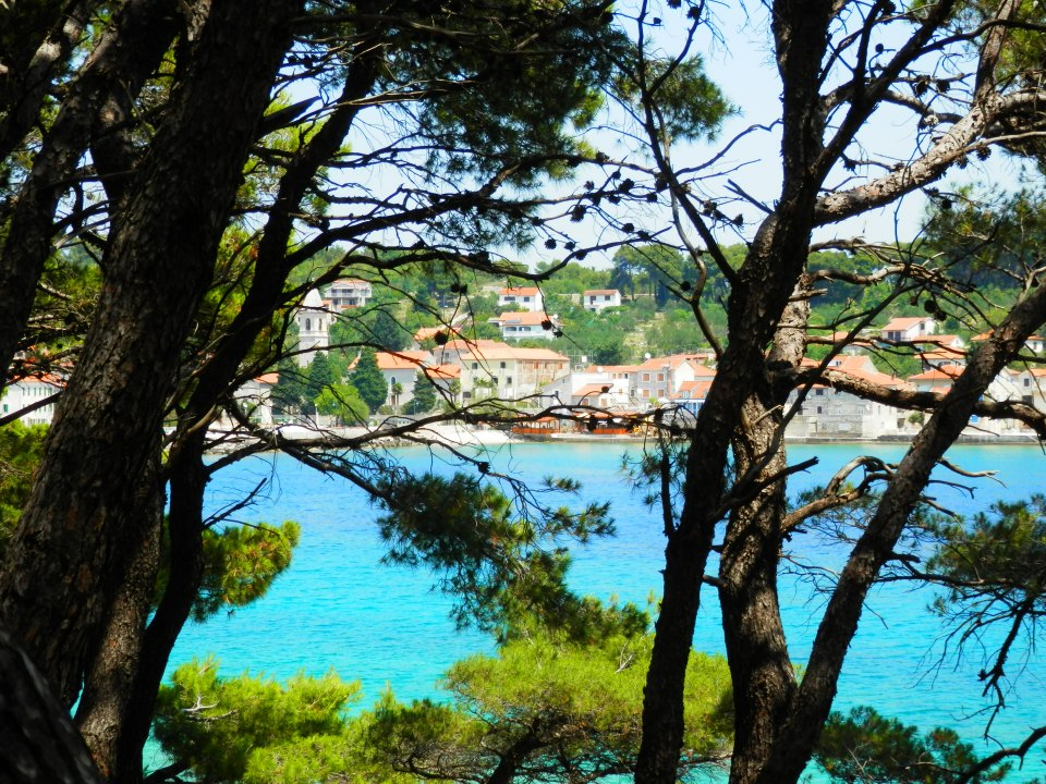 Prvic Luka through the trees